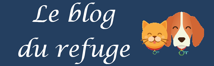 Le blog du refuge