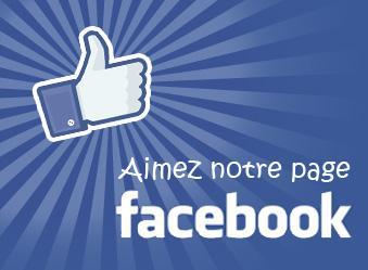 Facebookvbvm 339x249