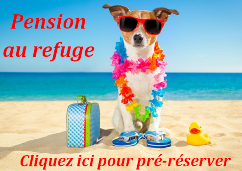 Logo pension vacances